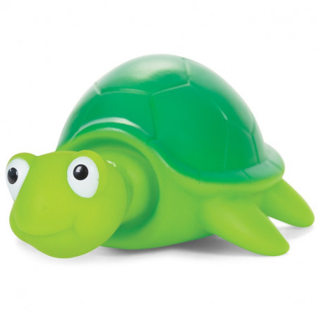 POP TURTLE