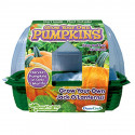 Grow Your Own Pumpkins