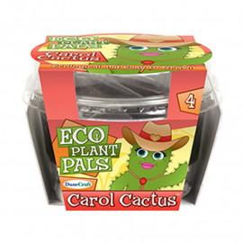 Ekologiczna roślina Karol Kaktus