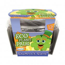 Ekologiczna Koniczynka Steve