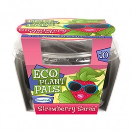 Strawberry Sarah Eco Plant Pal