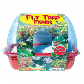 FLY TRAP FIENDS TERRARIUM