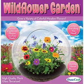 Wild Flower Garden Glass Terrarium