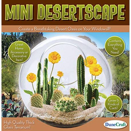 Mini Desertscape Glass Terrarium