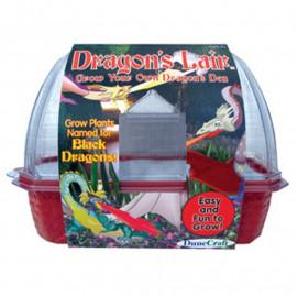DRAGON'S LAIR WINDOWSILL GREENHOUSE