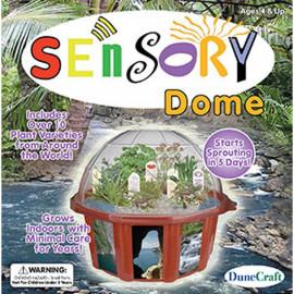 Sensory Dome Terrarium