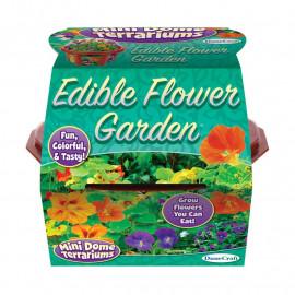 EDIBLE FLOWERS MINI DOME TERRARIUM