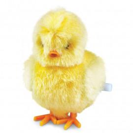 Nakręcany Kurczaczek