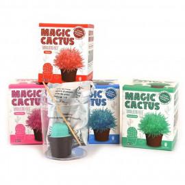 Kryształkowy kaktus 1z4 wzorów, 10cm