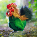 ANIMIGOS WORLD OF NATURE ROOSTER