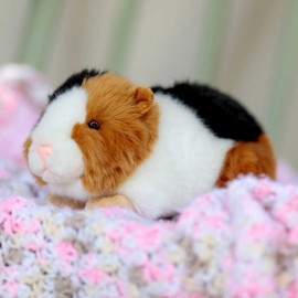 ANIMIGOS WORLD OF NATURE GUINEA PIG