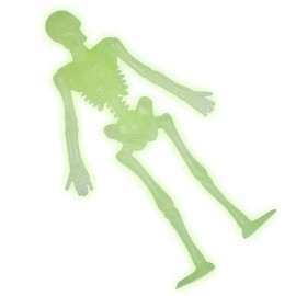 Glow In The Dark Stretchy Skeleton