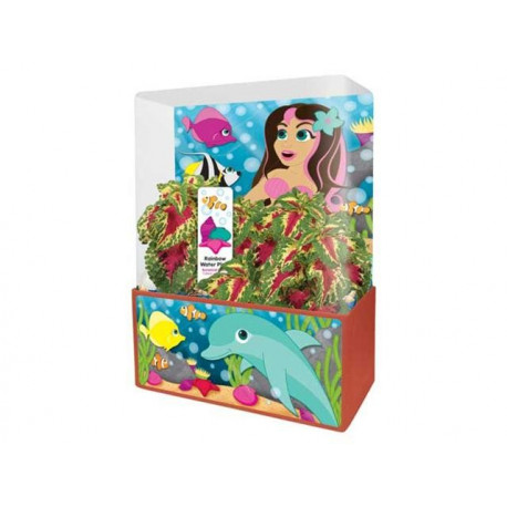 'MERMAID''S GROWING GROTTO PLANT CUBE'
